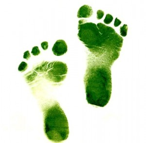 green-footsteps-ii1