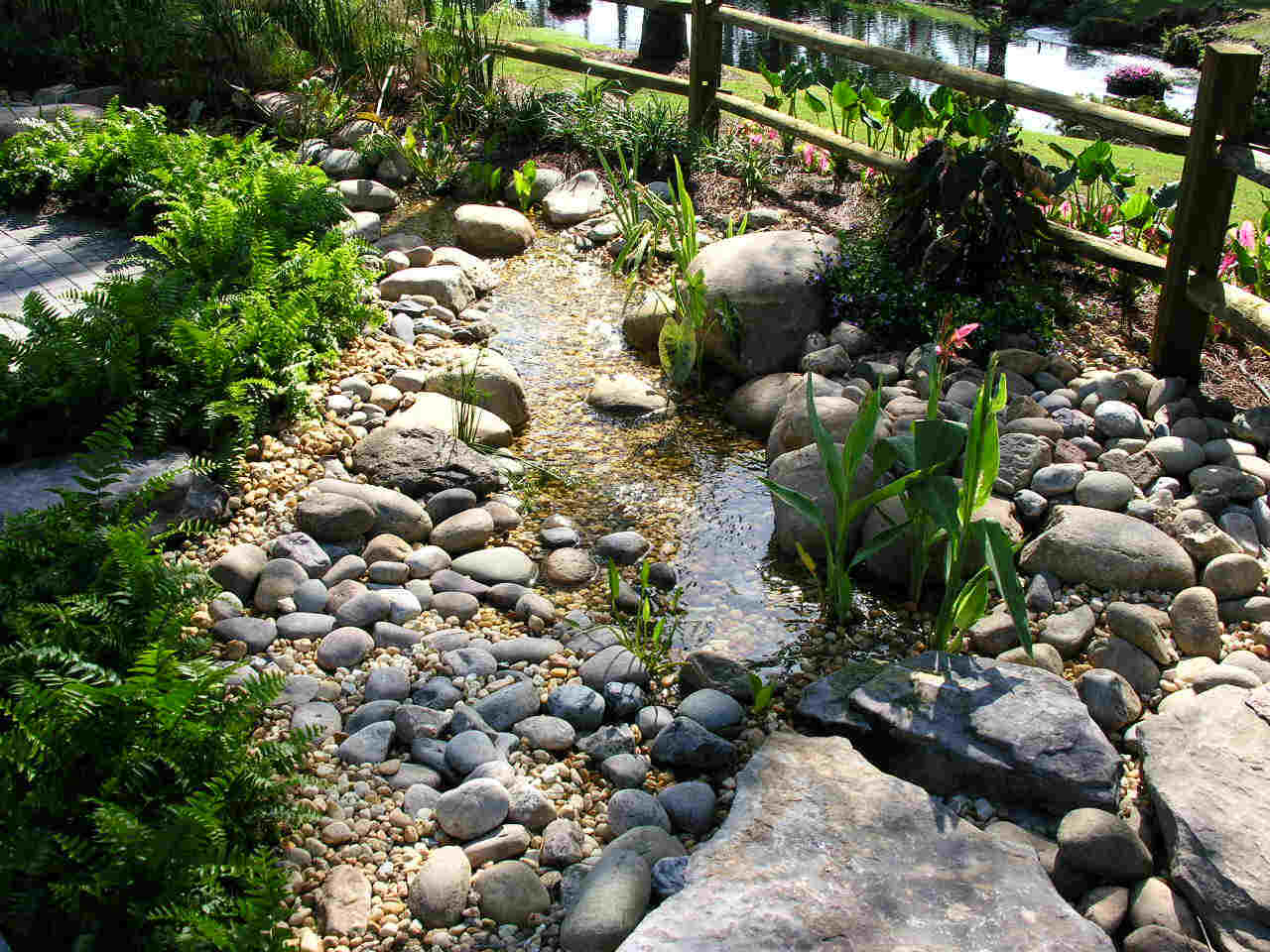 Rain harvesting raingardens for Rain garden design