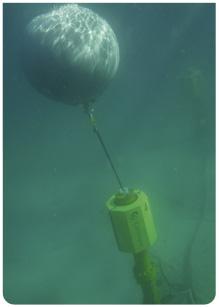 ceto-underwater